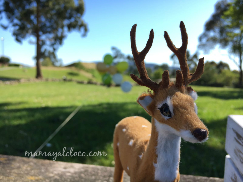 ciervo-fiesta-cumpleaños-animales-del-bosque-umidori.oceanica.jpg